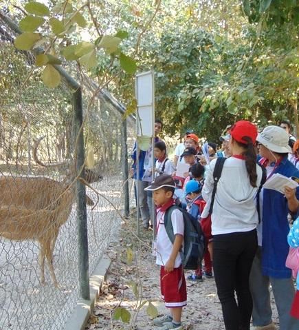 Field Trip to Tamao Zoo
